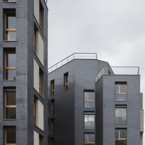 Logements - Ivry / Bach Nguyen Architecture / Staffordshire Blue Ketley